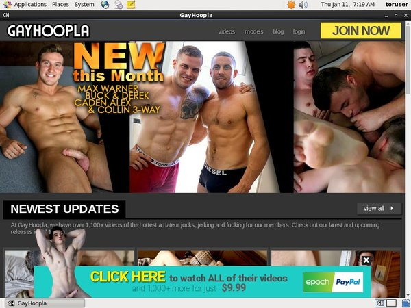 Gayhoopla Paypal Sign Up